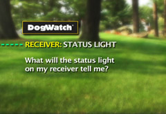 What will the status light on my on my receiver tell me?